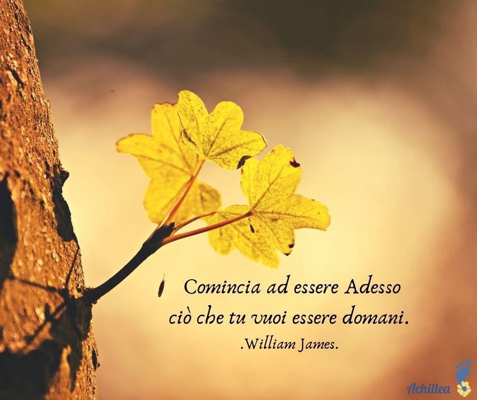 William James #001